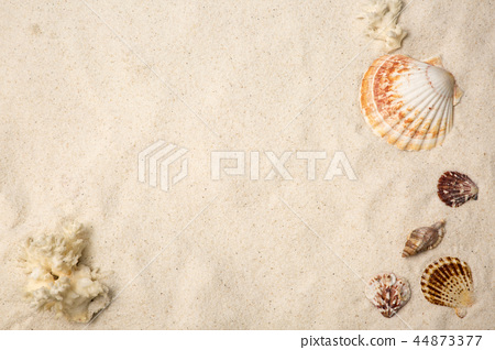 Summer holiday concept photo. vacation items and beach accessories in swimming pool or yellow background. 089 44873377