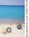 處理 海 貝類 44873418