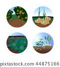 Summer Holiday Icon Set 44875166