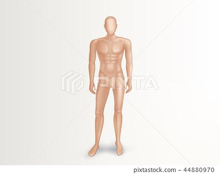 Vector 3d male mannequin, nude plastic dummy 44880970