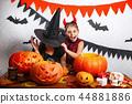 halloween girl child 44881886