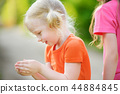 Adorable little girl catching little babyfrogs 44884845
