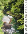 오쿠 타마 계곡의 그림 44887323