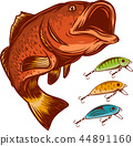 fish fishing logo and lures isolated on white vector illustration 44891160