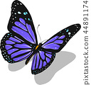 illustration of a beautiful colorful butterfly that flies 44891174