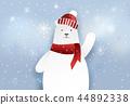 สัตว์,สัตว์ต่างๆ,หมีขั้วโลก 44892338