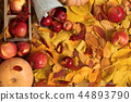 autumn harvest - fruits and vegetables  44893790