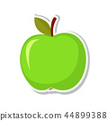 fruit, illustration, vector 44899388