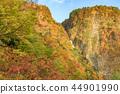 紹納瀑布秋天的葉子 44901990