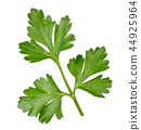Parsley leaf close-up on a white. Isolated 44925964