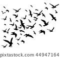 Flying birds flock vector illustration isolated on white background 44947164