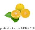 fresh lemon with leaves isolated on white 44949218