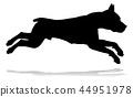 dog, silhouette, animal 44951978
