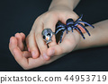 Child hand with a skull ring holding spider 44953719