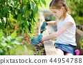 Adorable little girl wearing straw hat playing with her toy garden tools in a greenhouse 44954788