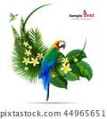 熱帶 樹葉 背景 44965651