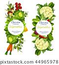 蔬菜 有機 自然 44965978