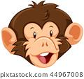 A monkey face on white background 44967008
