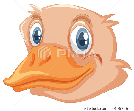A face of ostrich 44967269