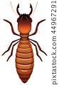termite vector bug 44967291