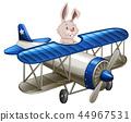 rabbit, animal, plane 44967531