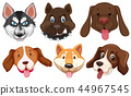 Set of dog breeds head 44967545