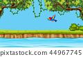 bird, vector, flying 44967745
