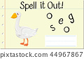 Spell it out duck 44967867