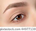 Close up view of beautiful brown female eye 44977139