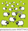 fence, grass, green 44977443