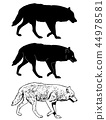 wolf silhouette and sketch illustration 44978581