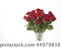 ดอกไม้,ที่ว่าง,พื้นหลังสีขาว 44979838
