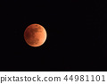 Total lunar eclipse 44981101