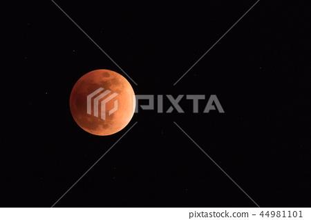 月全食 44981101