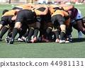rugby, ball, balls 44981131