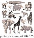 antelope, elephant, giraffe 44984075