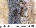 Anumal fur textured 44984388