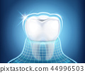 Dental related design element 44996503
