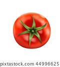 西紅柿 番茄 蔬菜 44996625