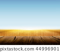 Natural wheat field background 44996901