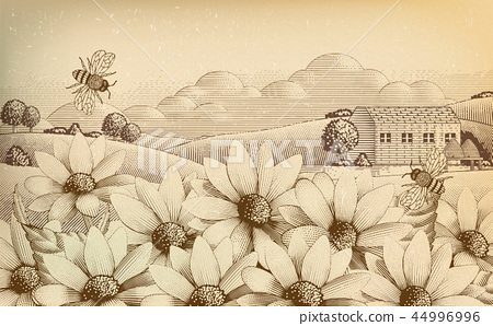 Engraved countryside scenery 44996996