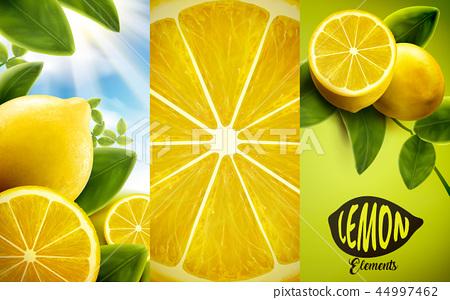 Lemon and green leaves elements 44997462