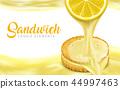 檸檬 水果 新鮮 44997463