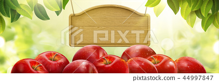 Natural fresh apple background 44997847
