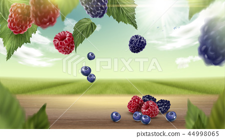 Blue berry and raspberry background 44998065
