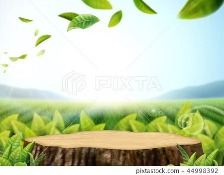Nature cut tree trunk background 44998392