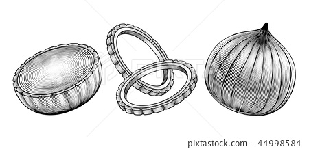 Engraved style onions 44998584