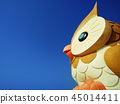 貓頭鷹 45014411