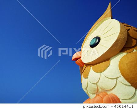 猫头鹰 45014411