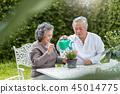 Asian Senior Couple enjoying with planting flower. 45014775